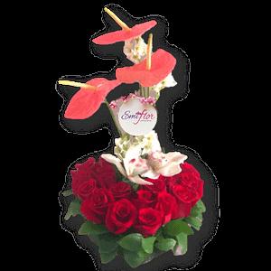 Flores rosas y anturios